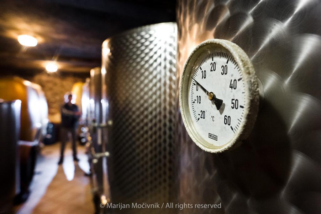 Ivo Senekovič, Senekovič winery, Maribor, Štajerska, Slovenia