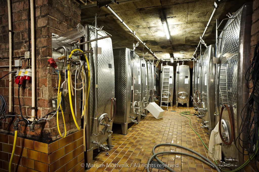 Karl May winery, Rheinhessen, Germany