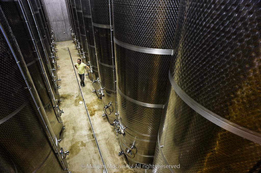Zlati Grič winery, Štajerska, Slovenia