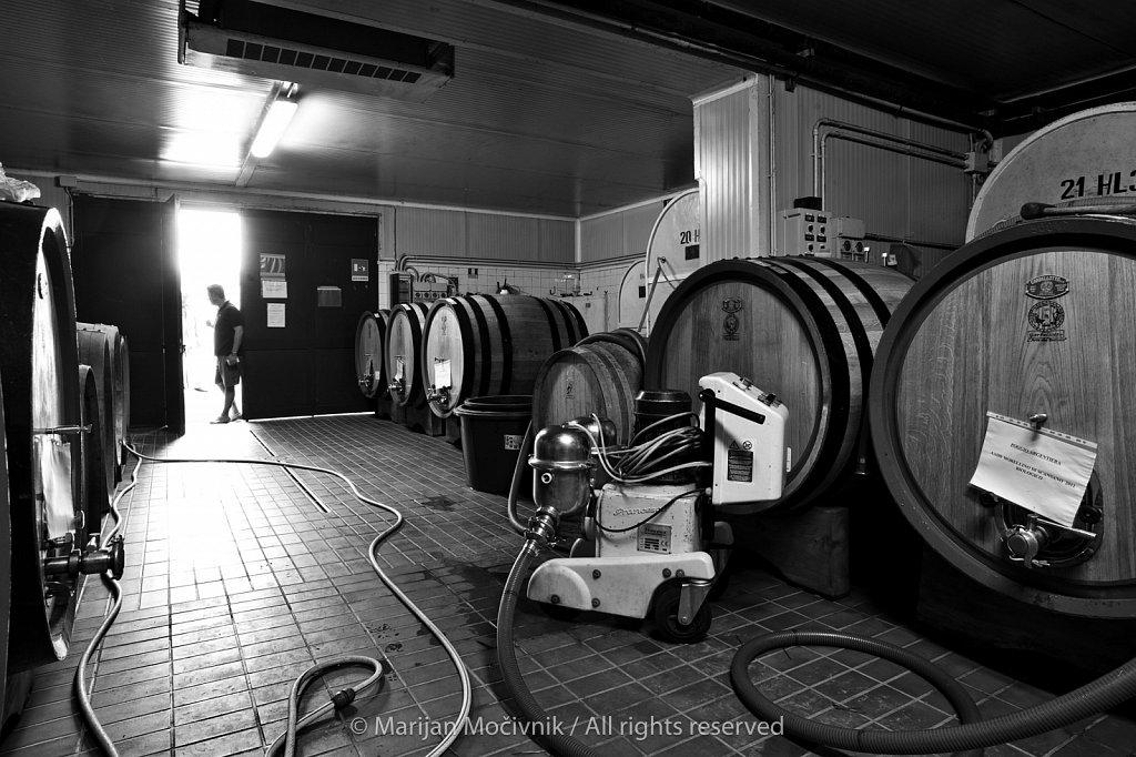 Poggio Argentiera Winery, Maremma, Tuscany, Italy
