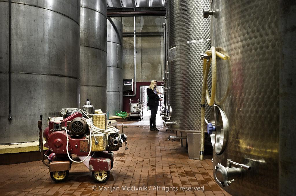 Vinakras Winery, Sežana, Kras, Slovenia