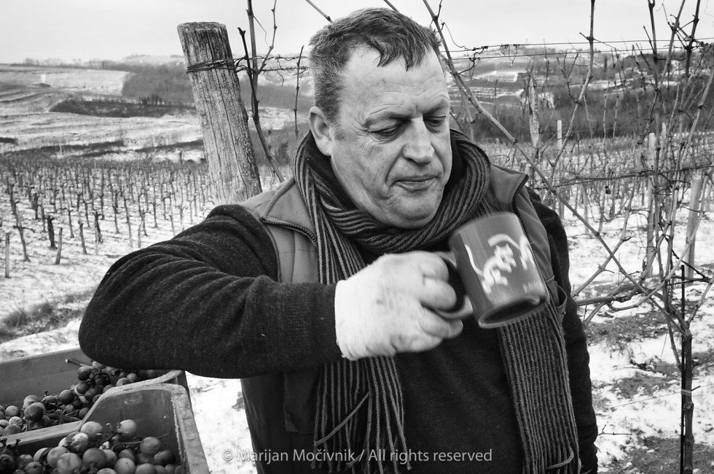 Stojan Ščurek