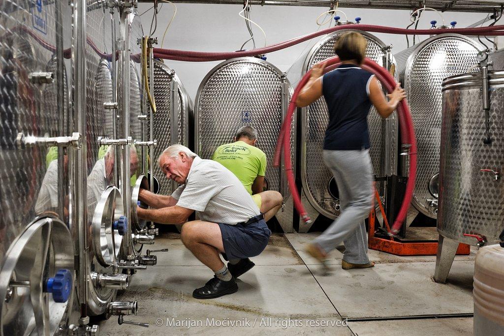 Sončni Škol Winery, Vipava Valley, Slovenia