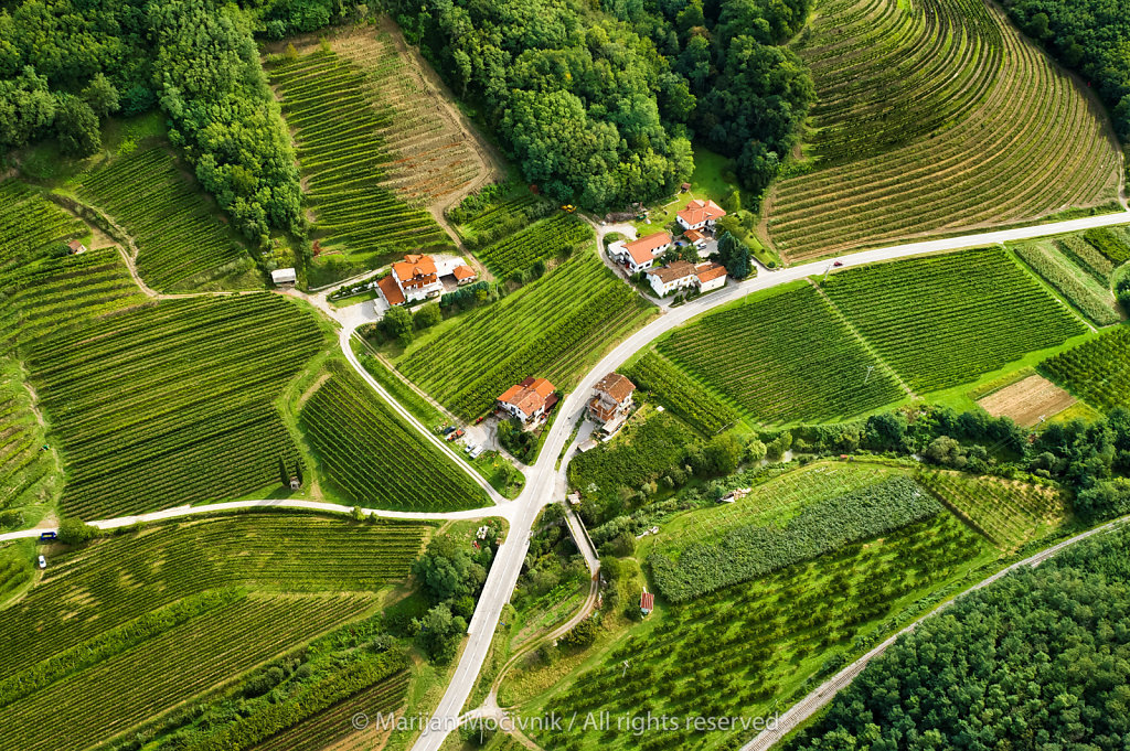 Steske, Vipava Valley, Slovenia