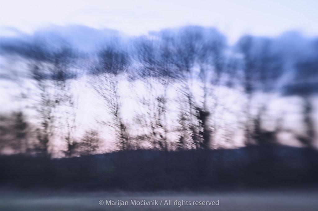 Drevesa-in-oblaki-Dobravlje-4707-2048.jpg