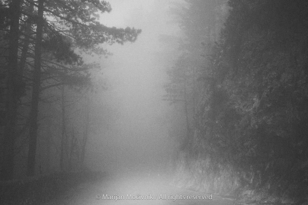 Cesta-Predmeja-Ajdovscina-1439-1-2048.jpg